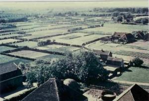 Gezien vanaf de kerktoren; midden rechts Hoge Werfie